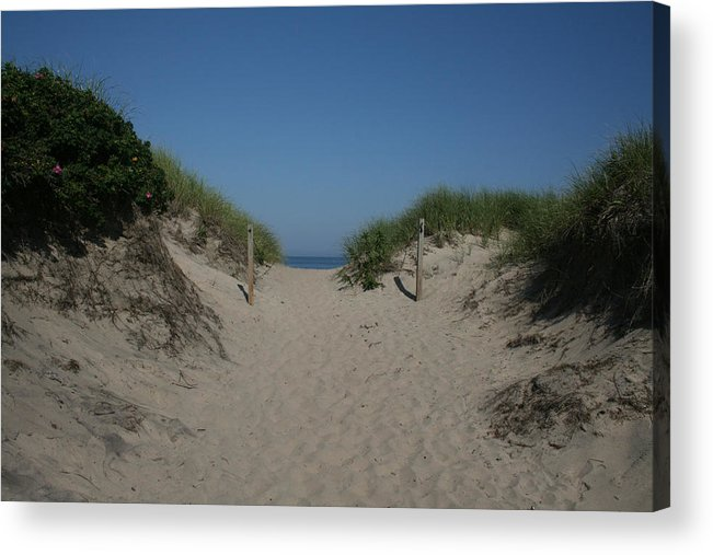Beach Acrylic Print featuring the photograph Sand Dunes Iv by Jeff Porter