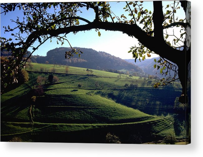 Schwarzwald Acrylic Print featuring the photograph Schwarzwald by Flavia Westerwelle