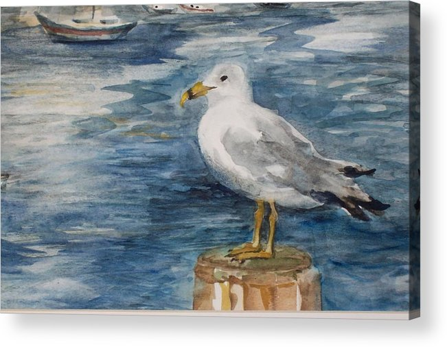 Dock Acrylic Print featuring the painting Seagull by Siona Koubek