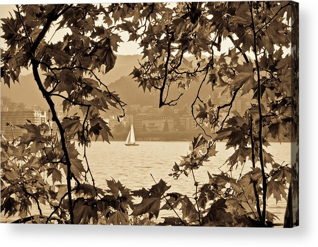 Sepia Acrylic Print featuring the photograph Sepia Sailboat by Andrea Barbieri
