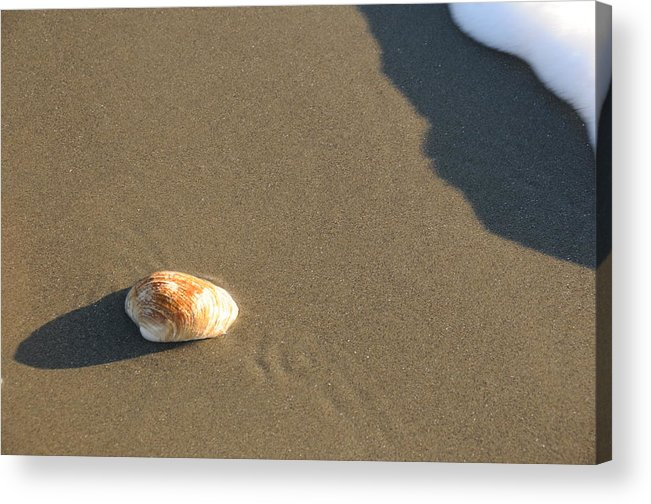 Beach Shell Sand Sea Ocean Acrylic Print featuring the photograph Shell And Waves Part 2 by Alasdair Turner