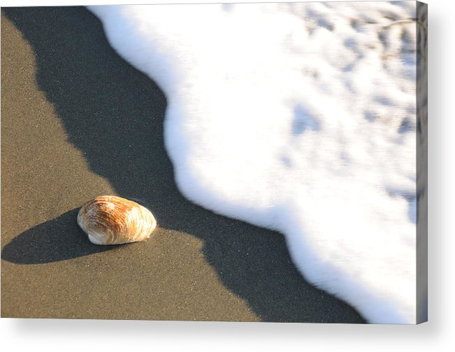 Beach Shell Sand Sea Ocean Acrylic Print featuring the photograph Shell And Waves Part 3 by Alasdair Turner