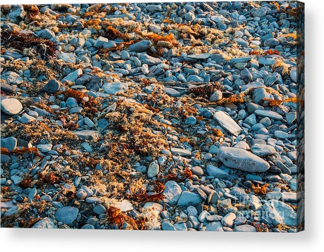 Rocks Acrylic Print featuring the photograph Shoreline by Alicia Heaney