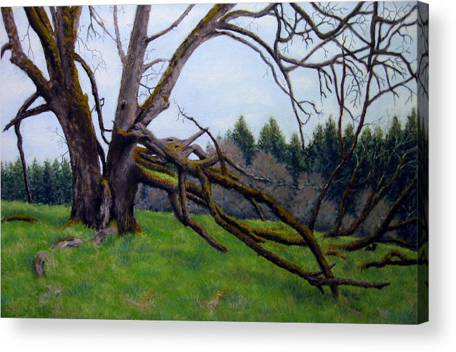 Landscape Acrylic Print featuring the painting Signature Oak by Carl Capps