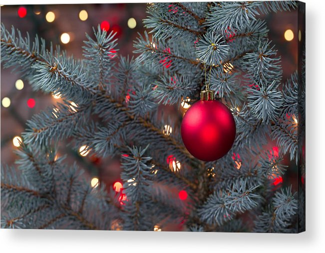 Single Red Ornament Hanging From Pine Tree With Glowing Lights Acrylic Print