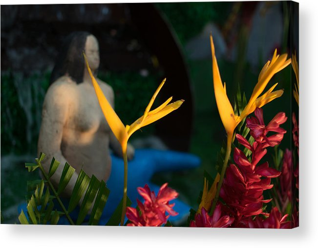 Sirena Acrylic Print featuring the photograph Sirena by Totto Ponce