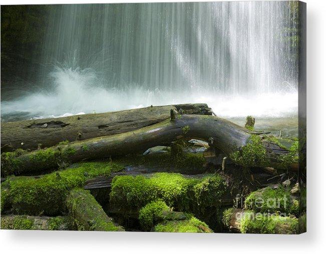Idaho Acrylic Print featuring the photograph Splash by Idaho Scenic Images Linda Lantzy