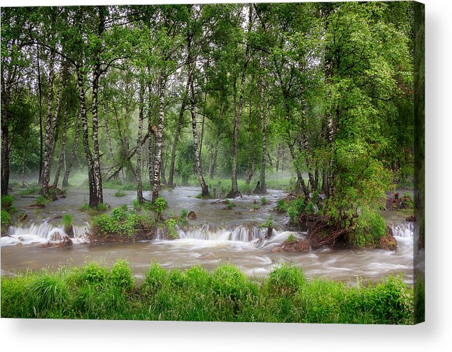 Spring Acrylic Print featuring the photograph Spring Floodwaters. Altai by Victor Kovchin