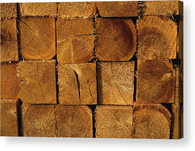 Group Acrylic Print featuring the photograph Stack Of Logs by David Chapman