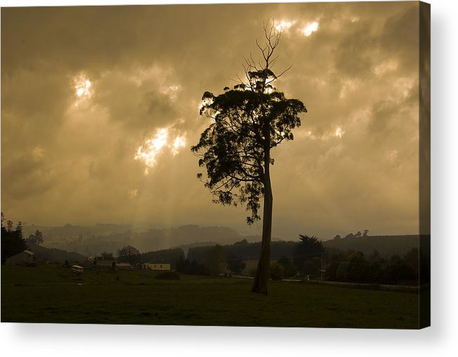 Landscape Storm Rain Trees Light Acrylic Print featuring the photograph Storm Over Wilmot by Sarah King