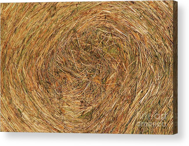Hay Acrylic Print featuring the photograph Straw by Michal Boubin