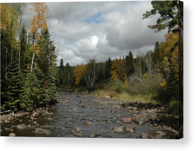 Nature Acrylic Print featuring the photograph Stream At Tettegouche State Park by Kathy Schumann
