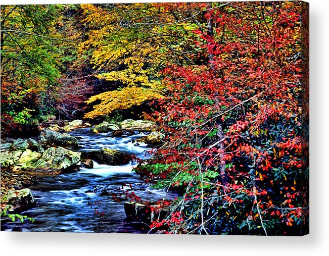 Landscape Acrylic Print featuring the photograph Stream In Autumn by Kevin Sherf