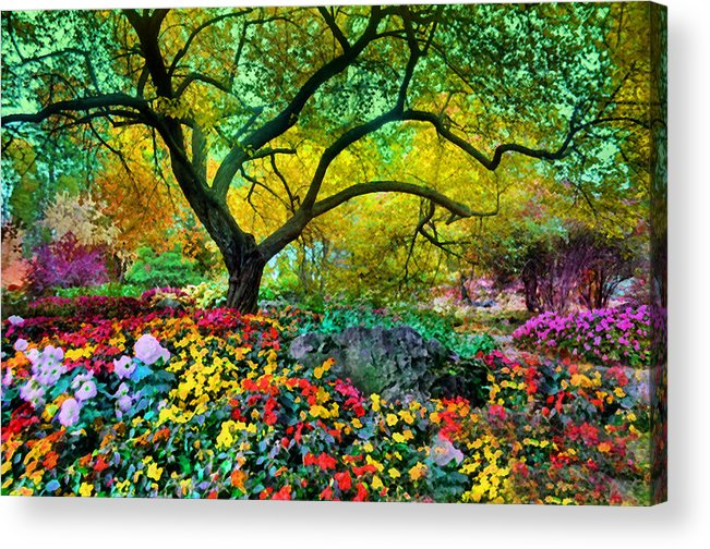 Tree Acrylic Print featuring the photograph Summer Ends And Autumn Begins by Tara Turner