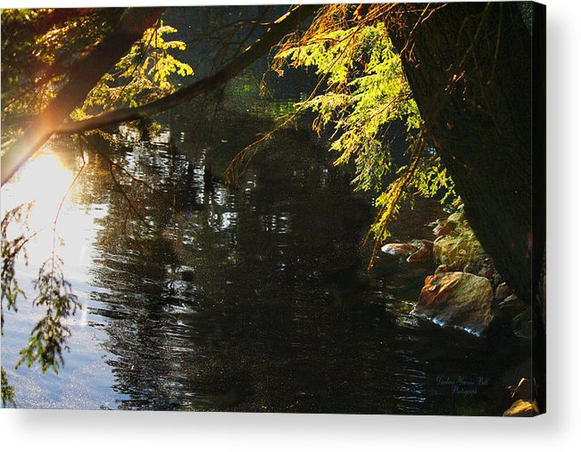 Reflections Acrylic Print featuring the photograph Sunlight Reflections by Darlene Bell