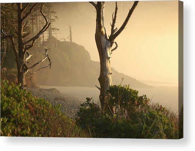 Landscape Acrylic Print featuring the photograph Sunrise Haze by Lori Mellen-Pagliaro