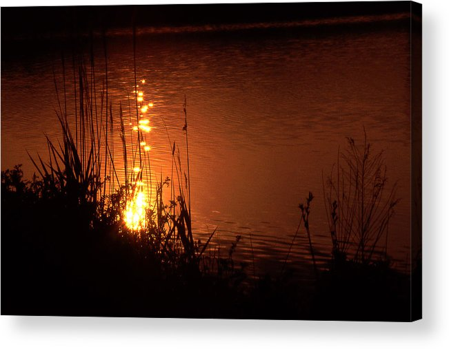 Sunset Acrylic Print featuring the photograph Sunset On The Water by Barry Shaffer
