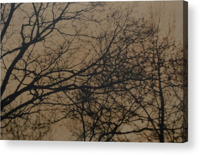 Landscape Acrylic Print featuring the photograph Sunset Snow by Rob Hans