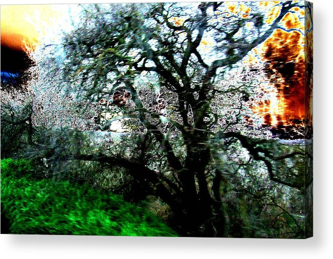 Abstract Acrylic Print featuring the painting Sunset by Tim Tanis