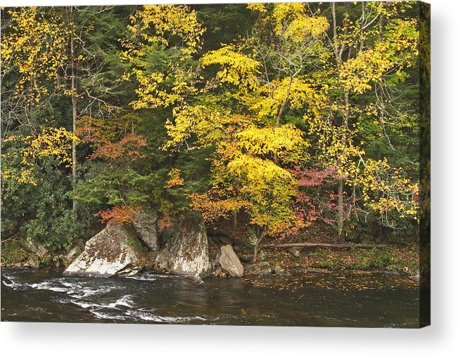 America Acrylic Print featuring the photograph Tellico River by Harold Stinnette