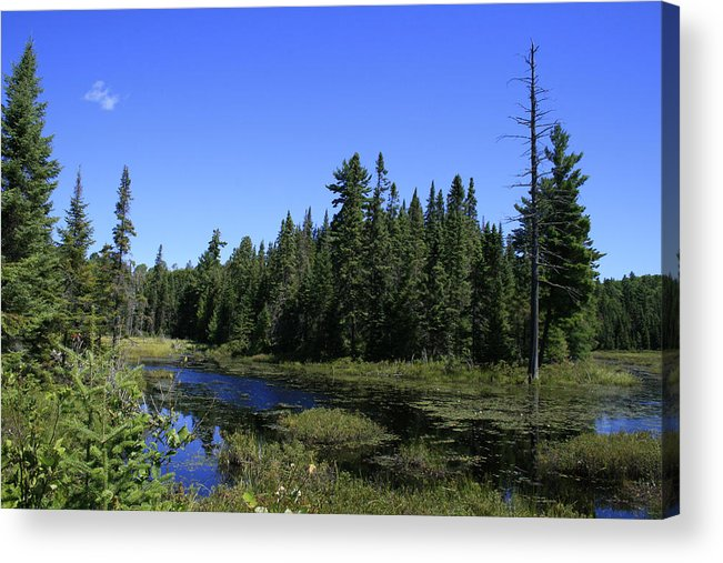 Landscape Acrylic Print featuring the photograph Thank You Mother by Alan Rutherford