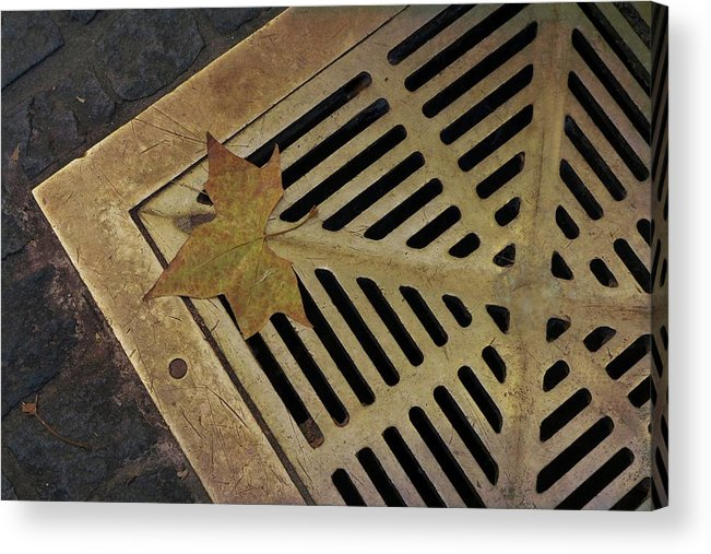 Bryant Park Acrylic Print featuring the photograph That's Just Grate by Cheryl Kurman