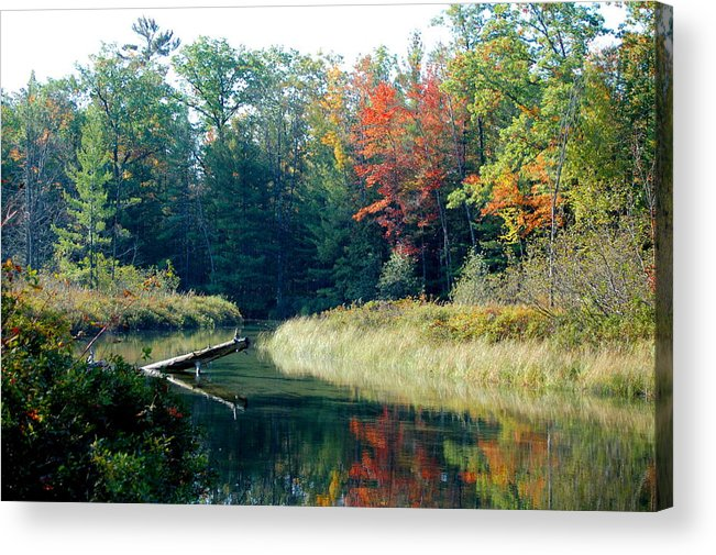 Landscape Acrylic Print featuring the photograph The Beginning Of Fall by Jennifer Englehardt