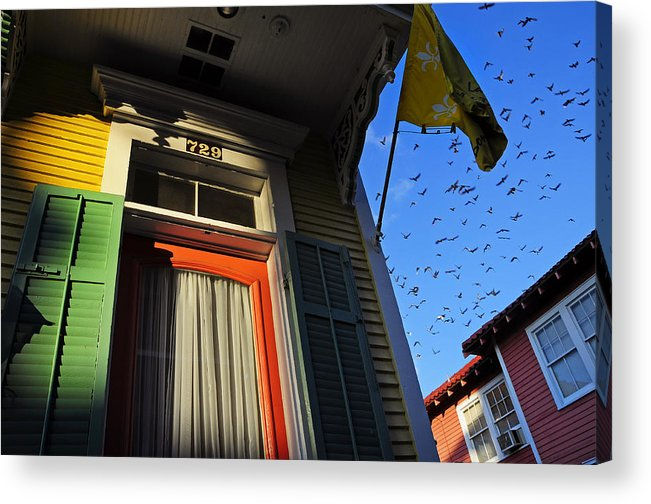 Skip Hunt Acrylic Print featuring the photograph The Birds by Skip Hunt