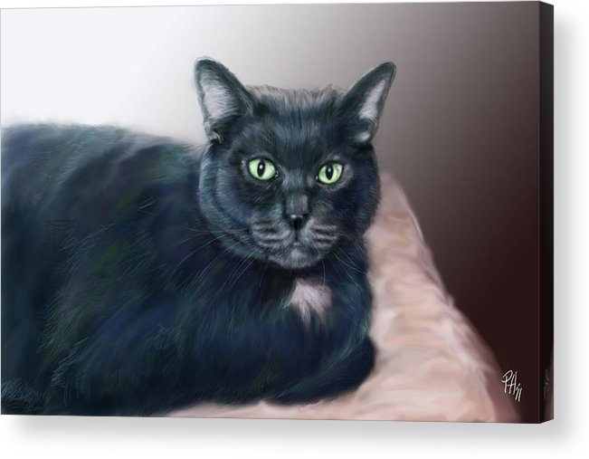 Cat Acrylic Print featuring the painting The Cat Named Boy by Peggy Hickey