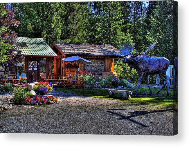 Priest Lake Acrylic Print featuring the photograph The Entree Gallery II by David Patterson