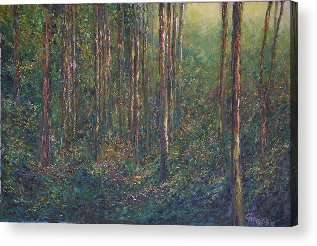 Landscape Acrylic Print featuring the painting The First Light by Wendy Chua