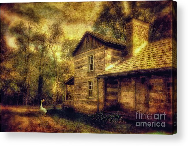 House Acrylic Print featuring the photograph The Guardian by Lois Bryan