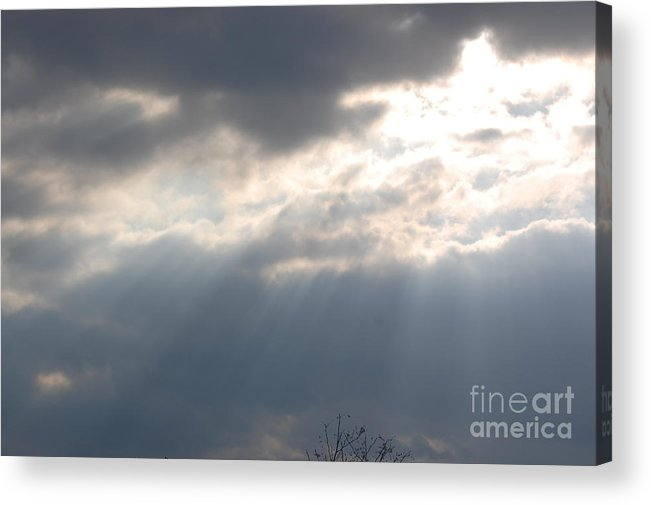 Sunshine Acrylic Print featuring the photograph The Light by Donna Bentley