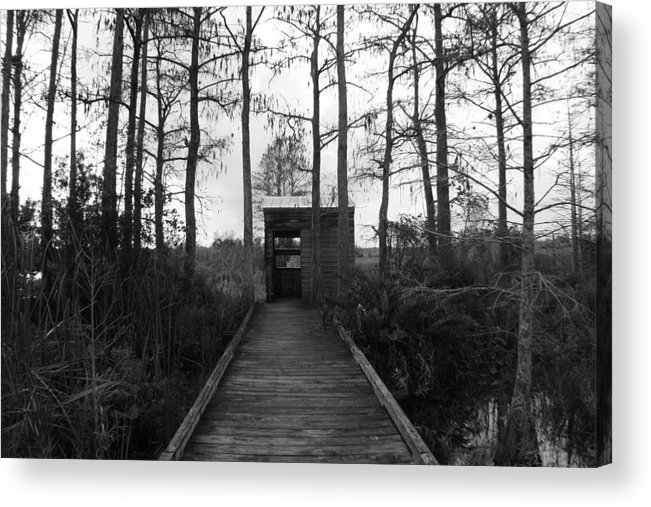 Nature Acrylic Print featuring the photograph The Little Old Shack by Bradley Nichol