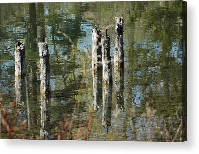 Landscapes Acrylic Print featuring the photograph The Old Swimming Hole by LeeAnn McLaneGoetz McLaneGoetzStudioLLCcom