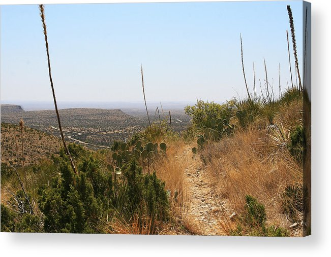 Guadalupe Mountains National Park Acrylic Print featuring the photograph The Permian Reef Trail by Brian M Lumley