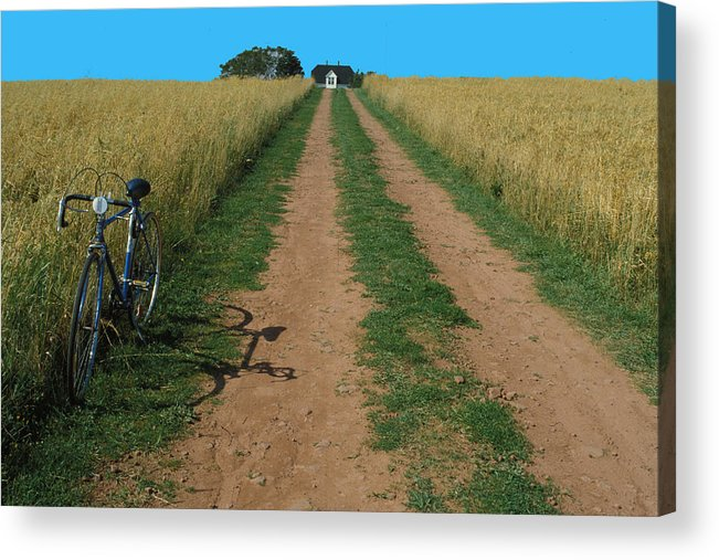 Dirt Acrylic Print featuring the photograph The Road To Home by Carl Purcell