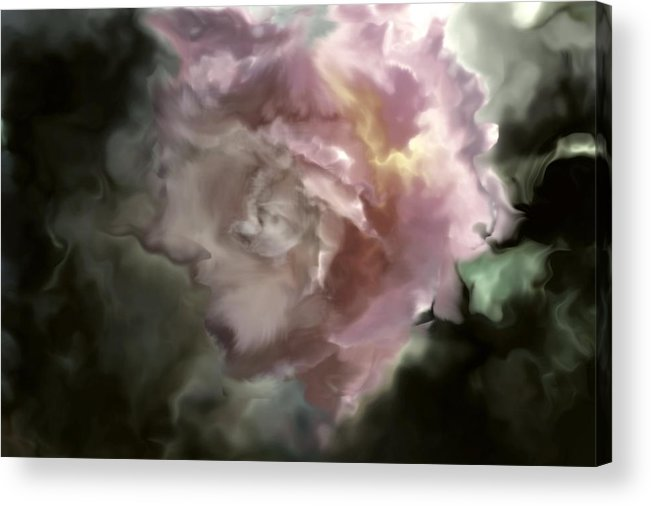 Rose Acrylic Print featuring the photograph The Rose by Helyn Broadhurst Cornille