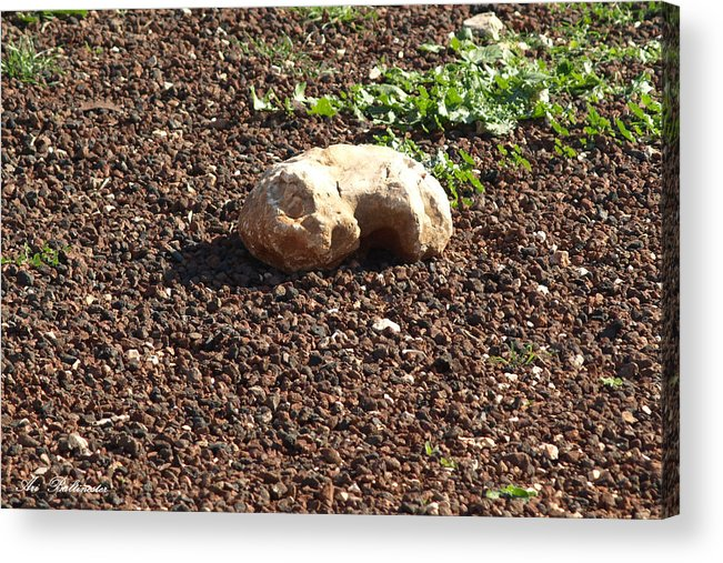 Stone Acrylic Print featuring the photograph The Sleeping Stone. by Arik Baltinester