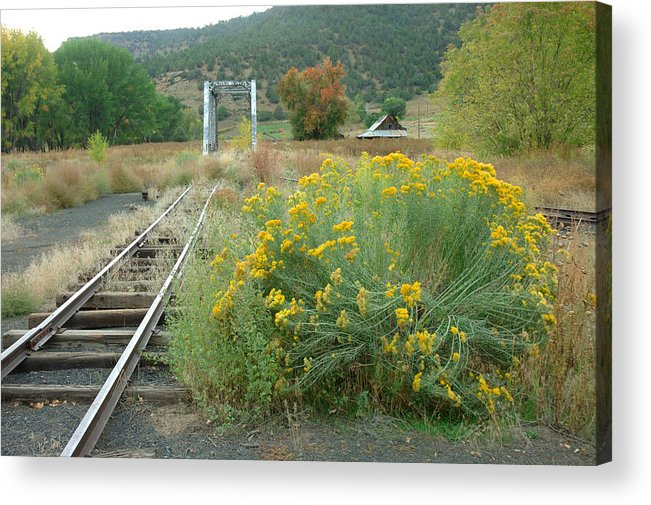 Train Acrylic Print featuring the photograph The Tracks At Pagosa Junction by Jerry McElroy
