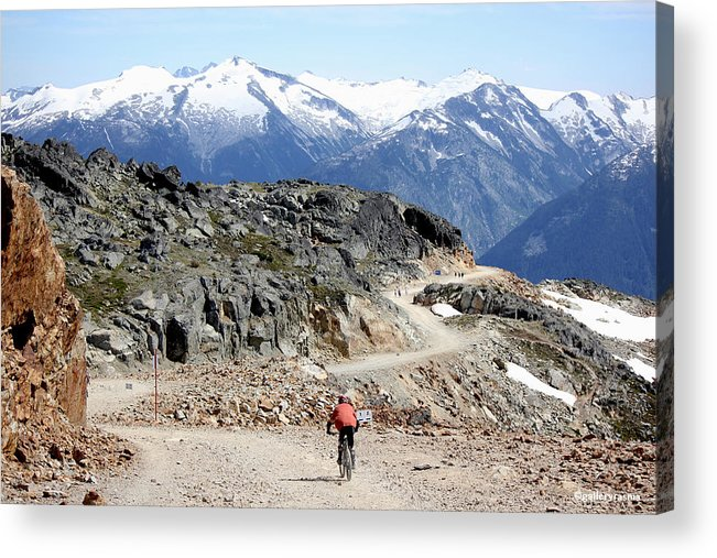 Mtb Acrylic Print featuring the photograph Top Of The World by Rasma Bertz