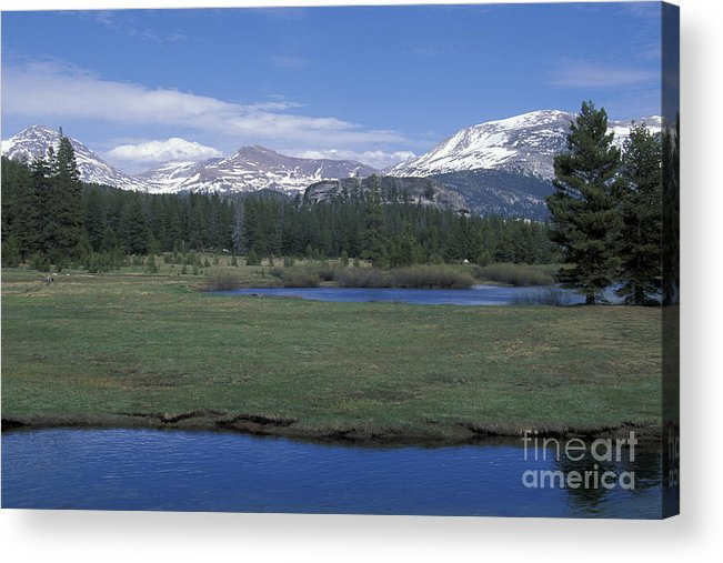 California Acrylic Print featuring the photograph Tuolomne Meadows In June by Stan and Anne Foster