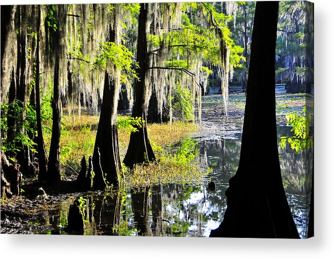 Skip Hunt Acrylic Print featuring the photograph Uncertain by Skip Hunt
