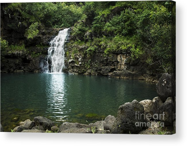 Falls Acrylic Print featuring the photograph Waimea Falls by Charmian Vistaunet