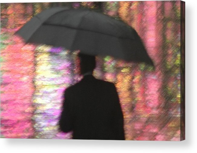 Rain Acrylic Print featuring the photograph Water And Colors by Dan Holm