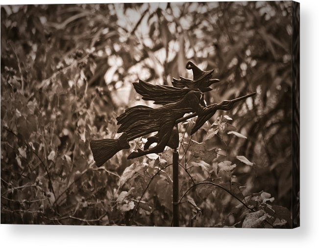 Weather Acrylic Print featuring the photograph Weather Vane by Teresa Mucha