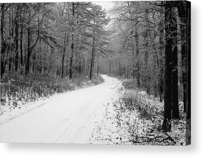 Winter Acrylic Print featuring the photograph Where Will It Lead by Jean Macaluso