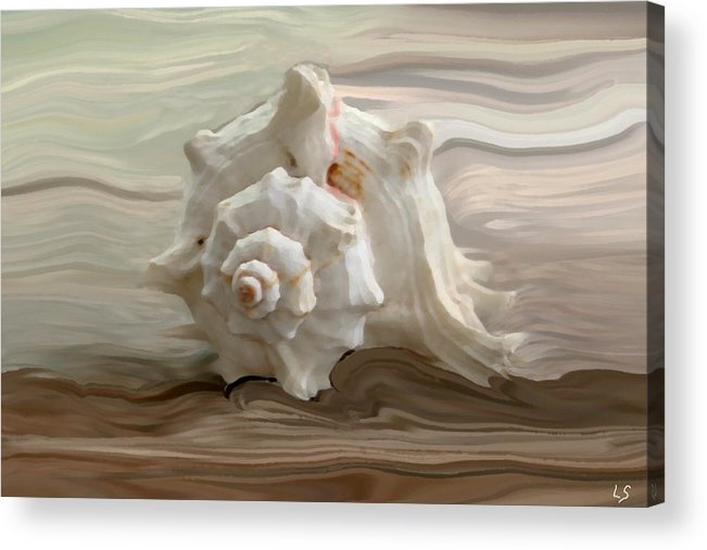 Seashell Acrylic Print featuring the photograph White Shell by Linda Sannuti