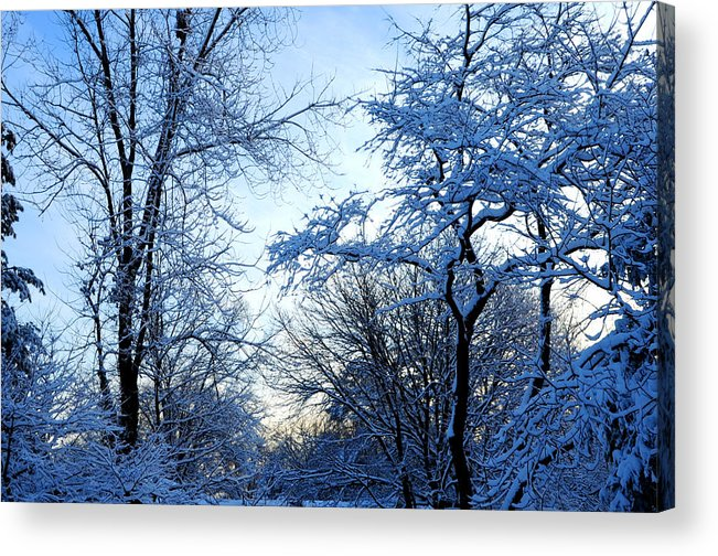 Winter Acrylic Print featuring the photograph Winter Sunrise II by Dimitri Meimaris