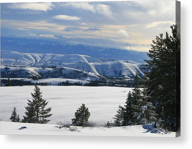 Mountains Acrylic Print featuring the photograph Winterland by JoJo Photography